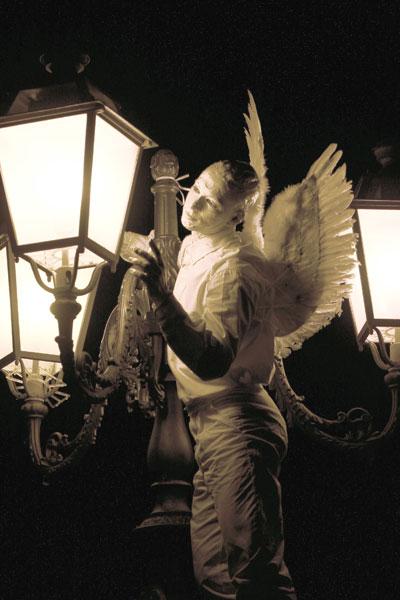 angeli36-full