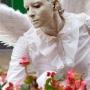 angeli11-full